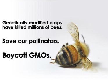 Save our pollinators